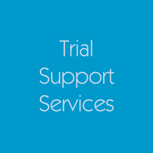 Graphics and Technology Support Services for Trial Attorneys